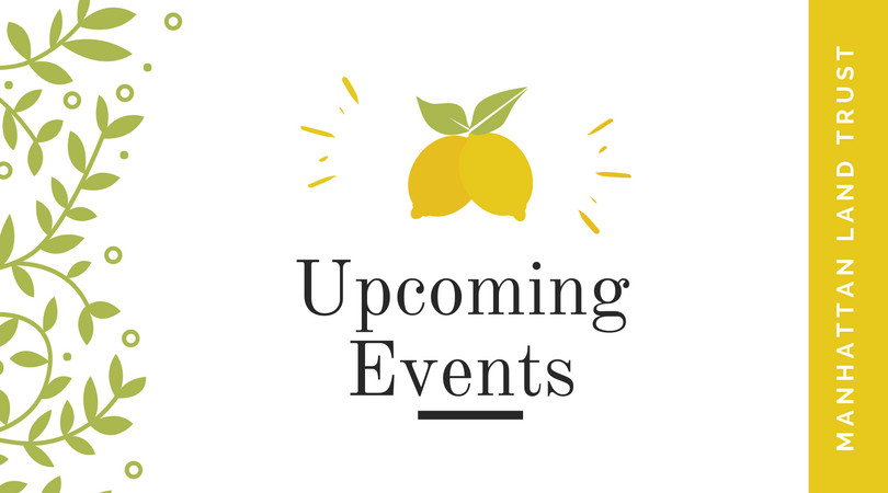 MLT upcoming-events