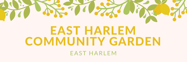 East Harlem Community Garden