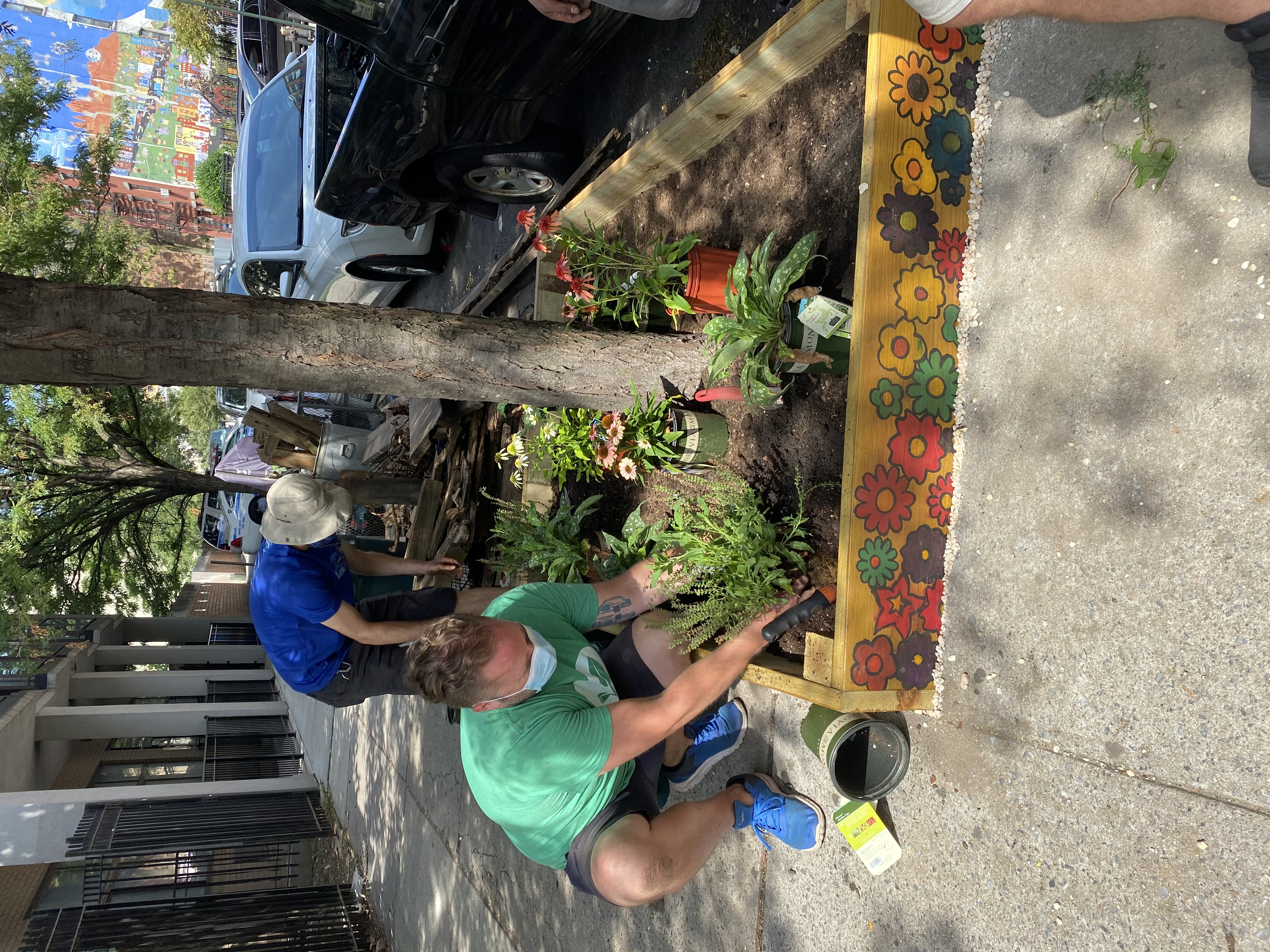 Gardeners installing wooden planks to create a planter box on the sidewalk adjacent to carver garden